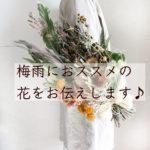 花のある暮らし:梅雨におススメめな花~